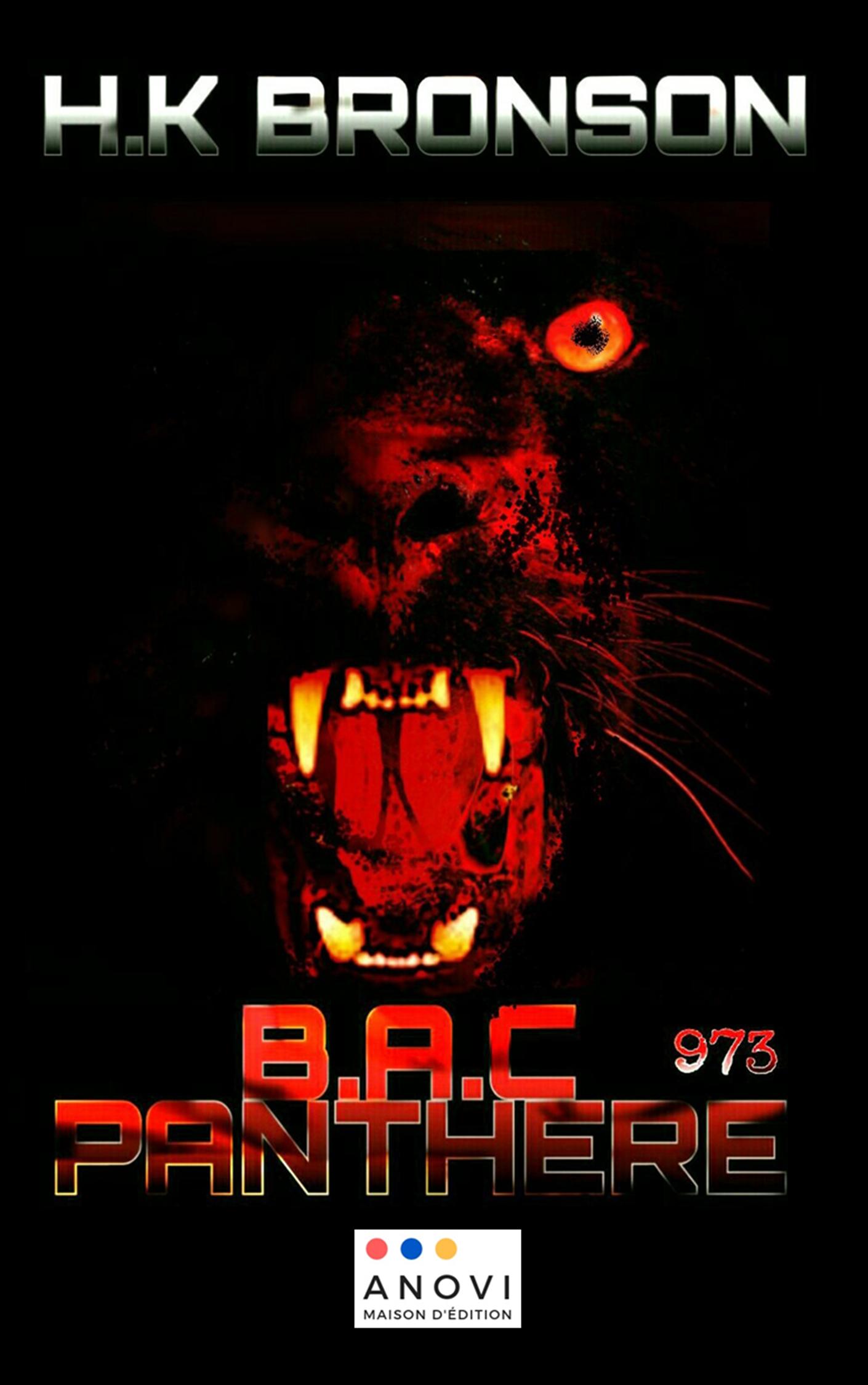 BAC Panthère 973 Image